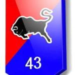 43 механизированная бригада