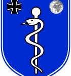 Командование медико-санитарной службы за рубежом