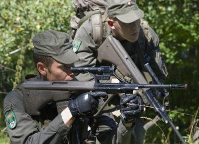 Вооруженные силы Австрии – новая организация.