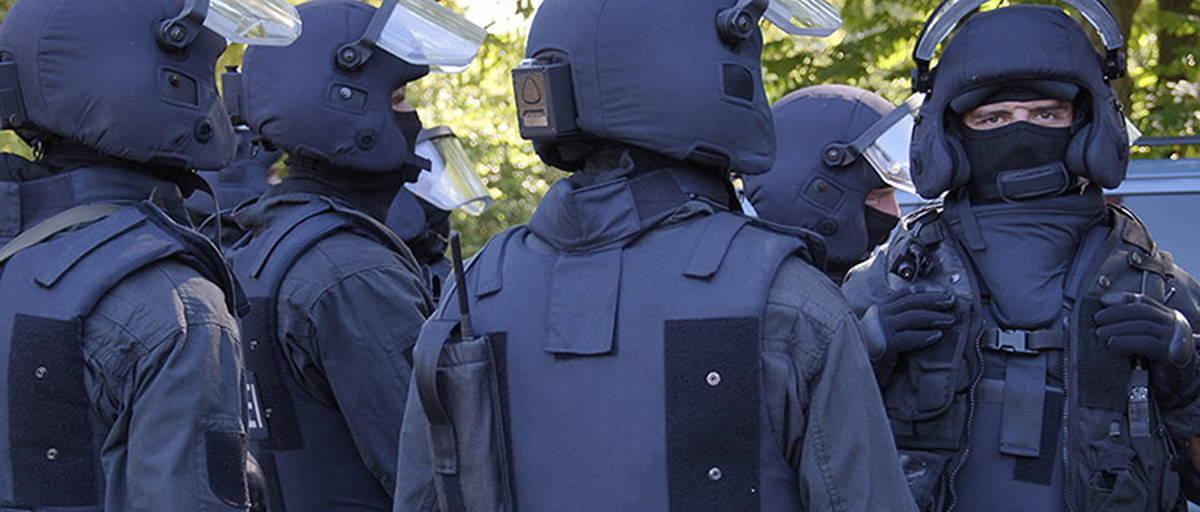 Отряд быстрого реагирования региональной полиции Германии