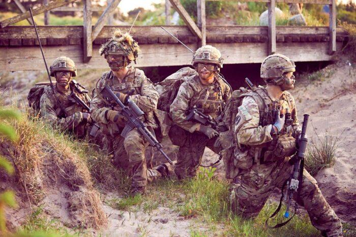 Легкая пехота Дании