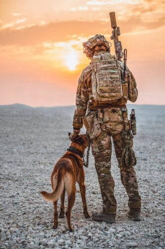 Военнослужащий ССО Нидерландов со служебной собаков